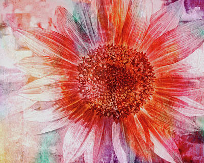 Digital Art - Sunflower Of Many Colors by Janet Duffey