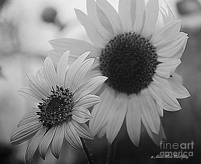 Photograph - Sunflowers by Janice Spivey