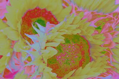Sunny Sunflowers Pop Art Original by Dora Sofia Caputo Photographic Art and Design