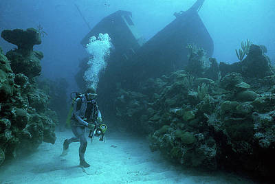 Photograph - Sunken Ship In Bermuda by Carl Purcell