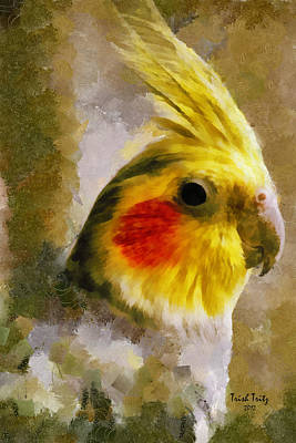 Cockatiel Photograph - Sunny Days by Trish Tritz