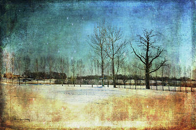 Photograph - Sunny Winter Day by Randi Grace Nilsberg