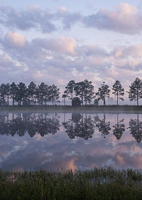 Photograph - Sunrise Across The Pond by Lauren Brice