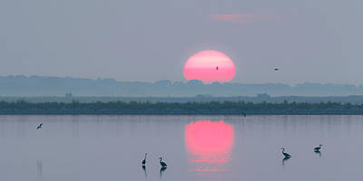 Photograph - Sunrise At Cheyenne Bottoms -01 by Rob Graham