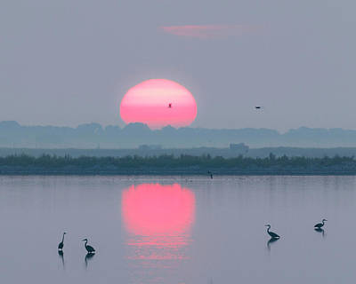 Photograph - Sunrise At Cheyenne Bottoms -02 by Rob Graham