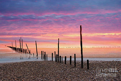 Sunrise At Woodstown Beach Art Print