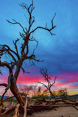 Vintage Signs - Sunrise, Death Valley 2 by Mike Penney