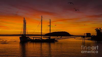 Photograph - Sunrise From Bar Harbor Maine. by New England Photography