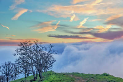 Brentwood Photograph - Sunrise Hike At Los Vaqueros by Marc Crumpler