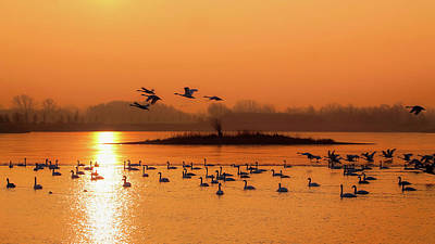 Photograph - Sunrise Meeting by Hans Benn