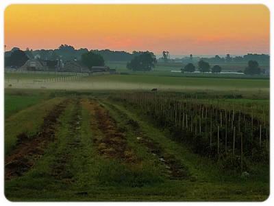Photograph - Sunrise On The Farm by Kenneth Cole