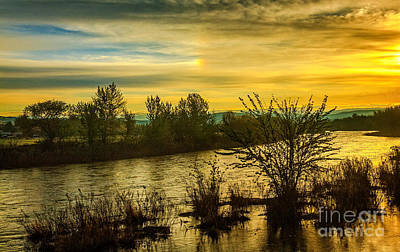 Photograph - Sunrise On The Payette River by Robert Bales