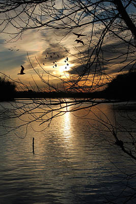Photograph - Sunset At The Lake by Ericamaxine Price