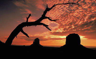 Photograph - Sunset In Monument Valley by Carl Purcell