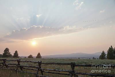 Photograph - Sunset by Kati Finell