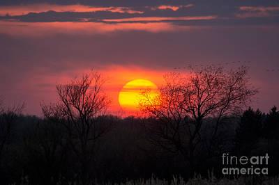 Photograph - Sunset Landscape by Cheryl Baxter