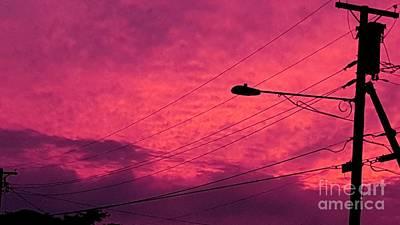 Photograph - Sunset by Marlene Williams