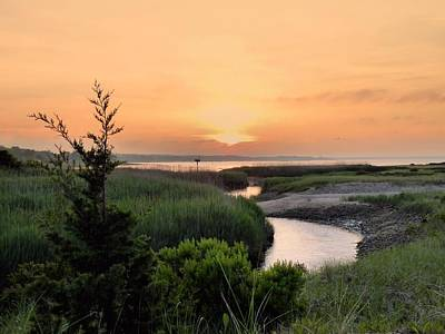 Photograph - Sunset Over Marsh by Janice Drew