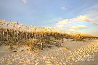 Photograph - Sunset Sea Oats by Shelia Kempf