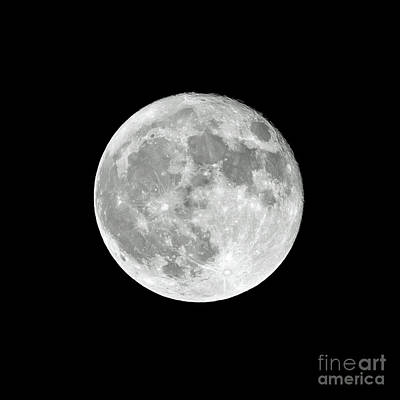 Photograph - Super Moon 2017 by Kevin McCarthy