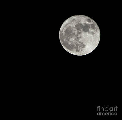 Photograph - Super Moon by David Millenheft