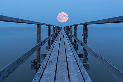 Photograph - Super Moon by Nebojsa Novakovic