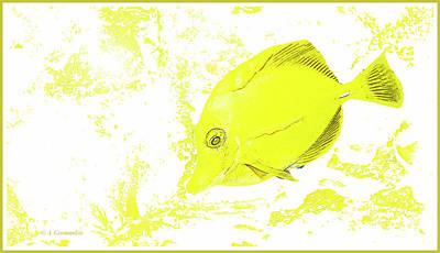 Digital Art - Surgeon Fish Yellow Tang Digital Art by A Gurmankin