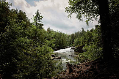 Photograph - Swallow Falls by Kelley Nelson