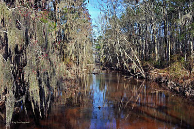 Photograph - Swampy Creek by Kay Lovingood
