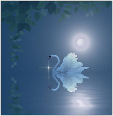 Swan Art Print by Harald Dastis