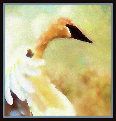 Photograph - Swan Sense by Kathy Bassett