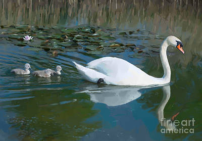 Landscape Photograph - Swan With Cygnets by Andrew Michael