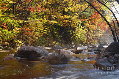 Swift River - White Mountains New Hampshire Usa Art Print