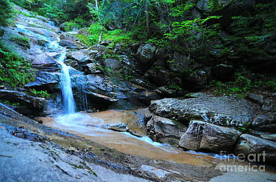 Swiftwater Falls  Art Print by Catherine Reusch Daley