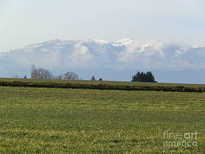 Photograph - Swiss Plain by Margaret Brooks