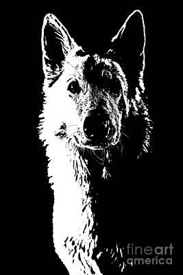 Swiss Mixed Media - Swiss Shepherd by Jana Behr