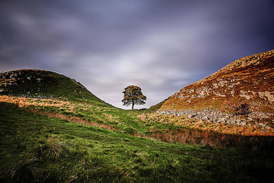Photograph - Sycamore Gap During Sunset. by Kelvin Trundle