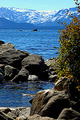 Photograph - Tahoe Is Blue by Lynn Bawden