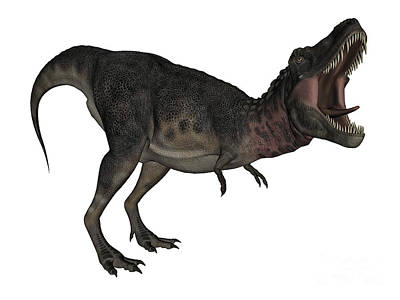 Tarbosaurus Digital Art - Tarbosaurus Dinosaur Roaring, White by Elena Duvernay