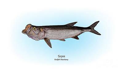 Tarpon Print by Ralph Martens