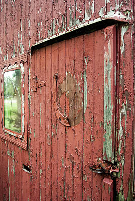 Photograph - Tattered by Melissa Newcomb