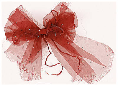 Tattered Red Print by Dolly Mohr
