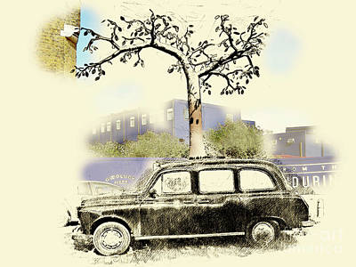 Photograph - Taxi Tree by Jack Torcello