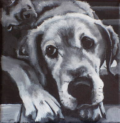Painting - Teddy by Carol Russell