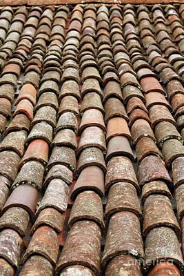 Terra Cotta Roof Tiles Art Print by Gaspar Avila