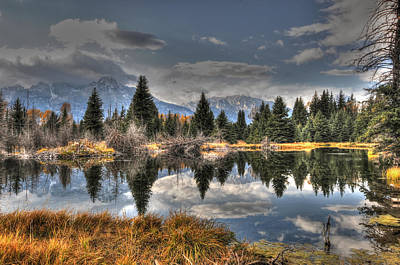 Photograph - Teton Beaver Pond by David Armstrong