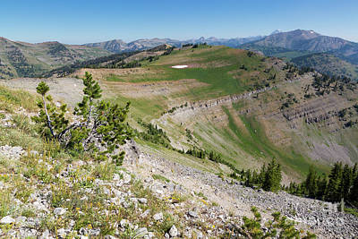 Whitebark Pines Photograph - Teton Peaks From Mount Glory by Mike Cavaroc