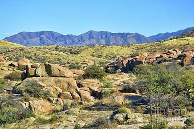 Photograph - Texas Canyon Arizona by Diana Mary Sharpton