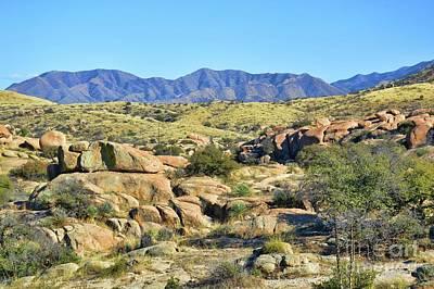 Photograph - Texas Canyon Arizona by Diana Mary Sharpton