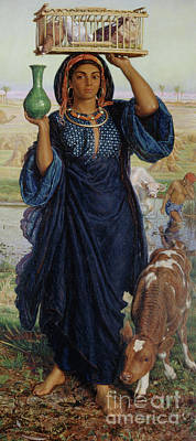 Chicken Portrait Wall Art - Painting - The Afterglow In Egypt by William Holman Hunt